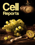 CELL REPORTS 2017